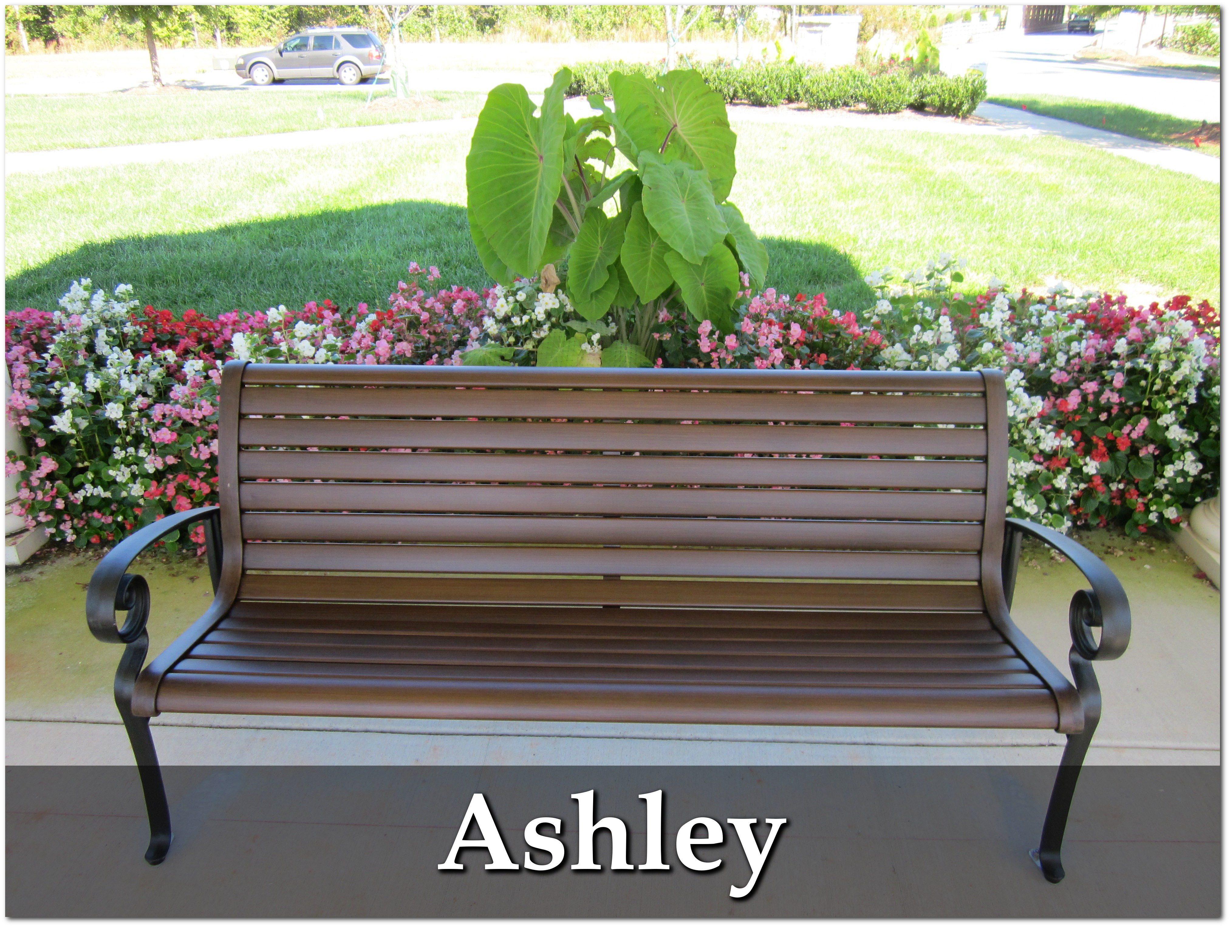 Ashley Collection Overview