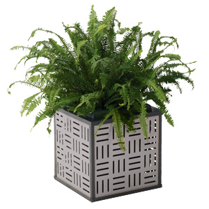 MPLANTER  Element Collection Planter